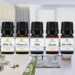 5 Star Hotel Scent Pure Essential Oil Aroma Diffuser Nebulizer