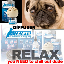 *dhks* Adaptil- .the secret to happy dogs. (help your dog cope with stressful situations is moving