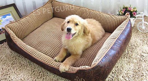 Qoo10 Dog Bed Sofa Pet Care