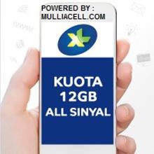 PAKET DATA XL HOTROD 12GB BERLAKU 24JAM/30  [BIASAKAN BACA ISI DESKRIPSI / ULASAN PRODUK]