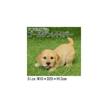 Animal object golden retriever QY-65
