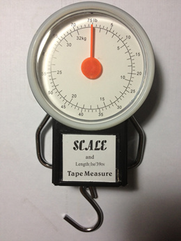 10g-32Kg Luggage Fishing Weight Scale. Free Shipping. Weight Measument
