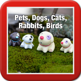 ◤Pets Dogs Cats Rabbits Birds◥ DIY Terrarium ♡ Rabbit ♡ Cats ♡ Bunny ♡ Kitten ♡ Puppy ♡ Dog ♡ Bird