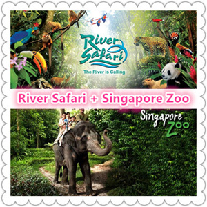 caterpillar shoes outlet singapore zoo night safari promotion