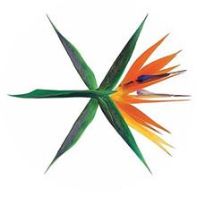 EXO - Vol 4