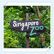 【Singapore Zoo】Singapore Zoo (Tram Ride included) one day e ticket pass 新加坡动物园门票