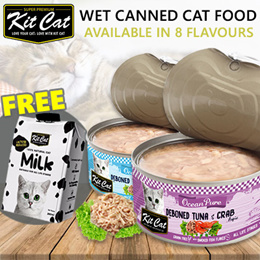 *b2k* can/wet CAT food from KitCat(carton discount CANS) _cfw