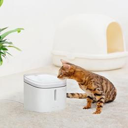 猫猫狗狗宠物饮水机