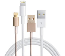 {JMI} Apple IPhone 5/5S/6/6+ Lightning Cable (White and Gold)