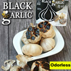 [MAGIC HEALTH]Organic Black Garlic Bawang Hitam-100% Natural- anti-cancer/lower-Double Antioxidant