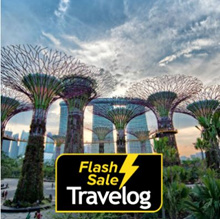 Singapore: Garden by the Bay Admission Ticket