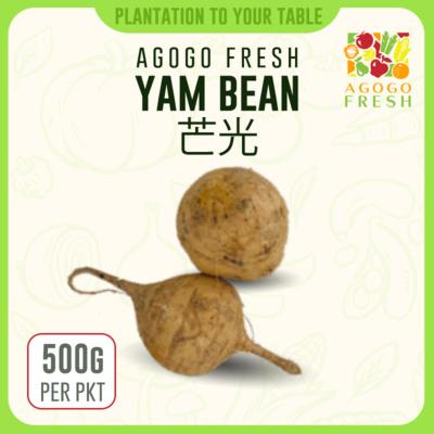 11 Yam Bean 芒光 (500g)