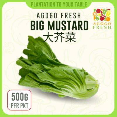 03 Big Mustard 大芥菜 (500g)
