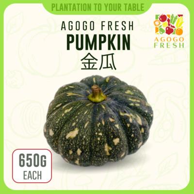 08 Pumpkin 金瓜 (650g)