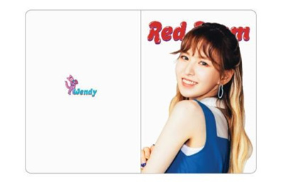 RED VELVET 1st concert Red Room OFFICIAL GOODS WENDY PASSPORT CASE NEW