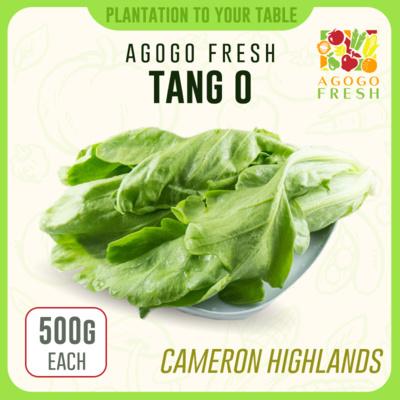 CH03 Tang O