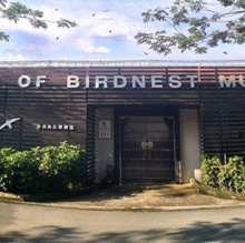 🆕Kids go for free! Bird nest Museum💓1st in SG💓Educational💓Fun💓Informative💓Only in SG💓