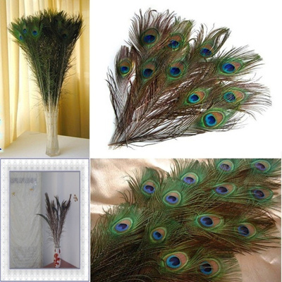 New Fashion 10 PCS Cool Gifts DIY 10 Peacock Eye Tail Feather for Masquerade Decoration Party (Color