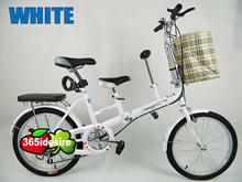 Dual Seat Child Seat Folding Bike