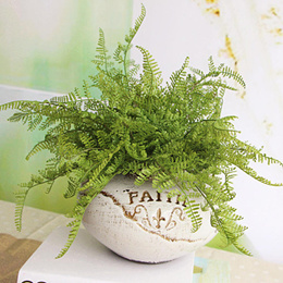 OEM Beauty Fern Fake Plant Artificial Floral DIY Home Decoration Decor