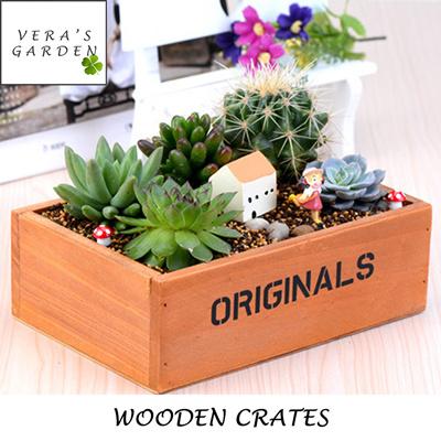 Christmas Succulent Decor.Vera S Garden Wooden Box Mini Wooden Crates