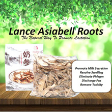 500g Lance Asiabell Roots The natural herbs to promote lactation.