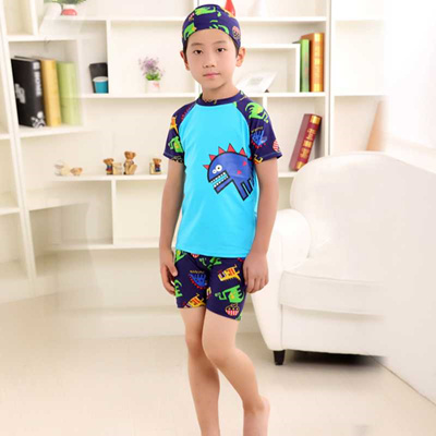 6f128d525a authentic kids boy Swimwear Baby Split Dinosaurs Quick Drying Boy Swimming  Suit Children Swimsuit Sw