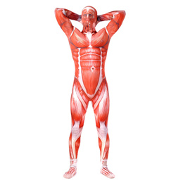 High Quality Spandex Zentai Adult Attack On Titan 2 Cosplay Costume for Men Japanese Anime Muscular