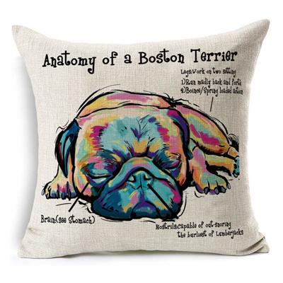 Qoo10 - Anatomy of a Boston Terrier Home Decor Creative Cute Car ...