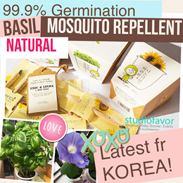 LATEST fr KOREA![Buy5+1 FREE] Eco-Friendly/Educational/Novelty Seed Pencil/Plant Kit