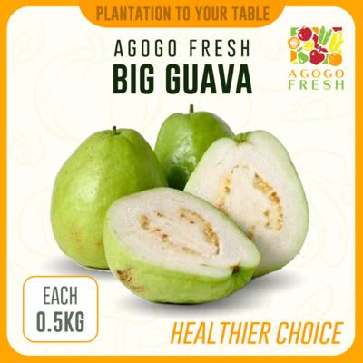 Guava (500g)