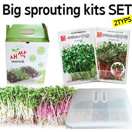 [Asia seed]★big sprouting kits★ 2Type set/Certified Organic / Add Growing / Emergency Preparedness Supplies/Handy Pantry /Food Storage/SBA_059