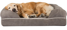 [FRIENDS FOREVER] Premium Orthopedic Dog Bed / Lounge, Removable Cover, 100% Suede with Memory-Foam