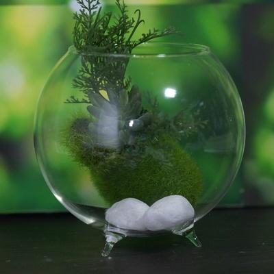 Qoo10 Glass Ball Vase With 3 Legs 12cm Diameter For Terrarium And