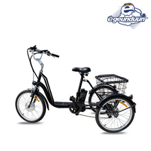 ★ Free Shipping / 3-wheel electric bicycle hobby bike with VAT included High performance 36V lithium 10AH battery 20 inch /