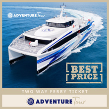 Batam Two-Way 2-Way Ferry Ticket Inclusive of all Taxes *Immediate E-Boarding Pass*