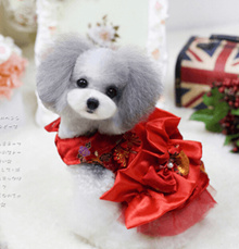Pet festive New Year Chinese dress cheongsam dog dress dress clothes Teddy autumn and winter clothes