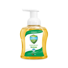 ANTI-BACTERIAL PINE FOAMING HAND WASH 300ML