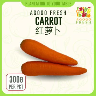 14 Carrot 红萝卜 (300g)