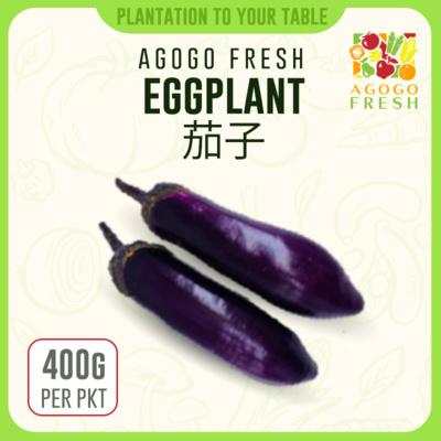 18 Eggplant 茄子 (500g)