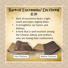 100g Bark of Eucommia (Extra Thickness)