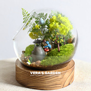 [ PREMIUM CELESTIAL GLASS BOTTLE SMALL ] Premium Terrarium Glass Jar / Terrarium Vessels / Gardening