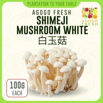 56 Shimeji Mushroom White 白玉菇 (100g)