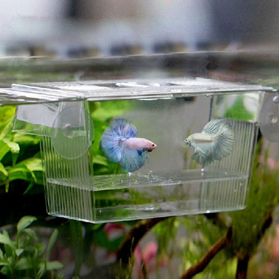 Transparent Aquarium Fish Hatchery Breeding Isolation Box Incubator Fish  Tank Hatchery Breeder Box H