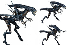 2018 Newest Animation Project NECA 15 Inch Alien Queen Alien Queen Queen Toy Model