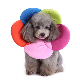 Pet e collar Pet Cone E-Collar For Cats Dogs Flower Elizabeth Soft Dacron Sponge Filling