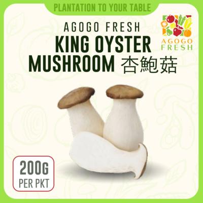 58 King Oyster Mushroom 鲍鱼菇 (200g)