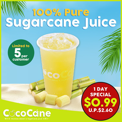 100 % Pure Sugarcane Juice (Regular Size)