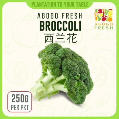 59 Broccoli 西兰花 (250g)