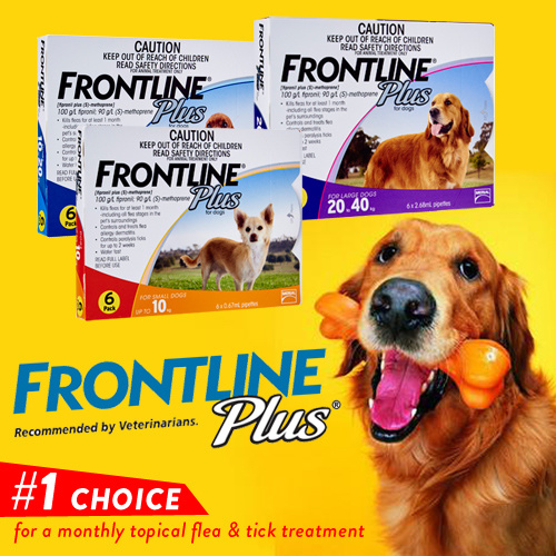 Frontline Plus For Dogs Of All Sizes Up To 40kg 3 Or 6 Doses